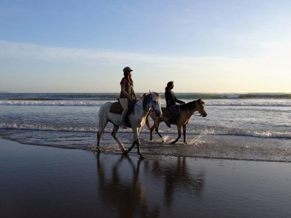 Mit Pferden am Strand