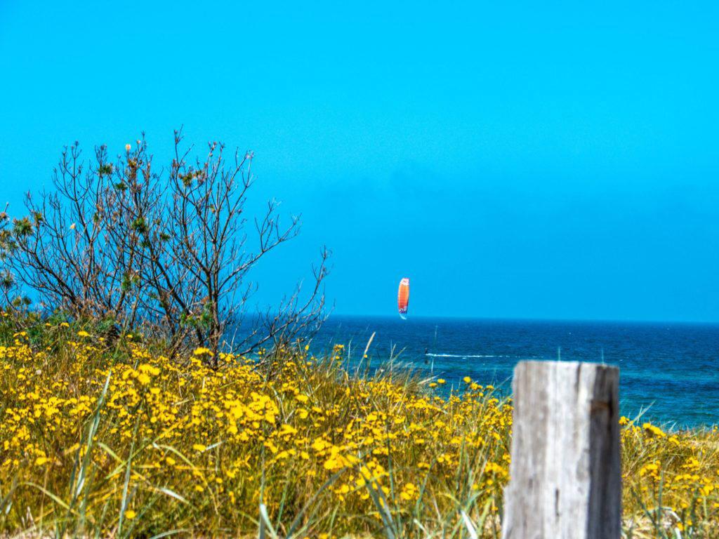 Dierhagen - Windsurfen