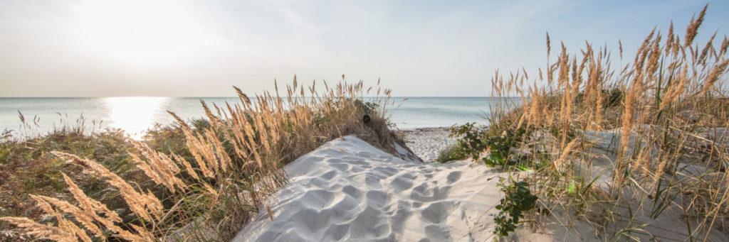 DuDüne am Strand von Dierhagen